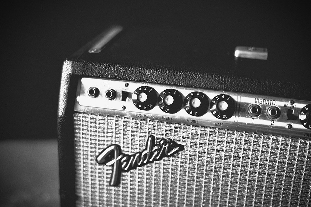 Life with Fender Vol.1